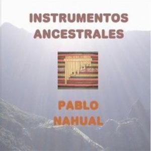 Pablo Nahual Conciertos Didacticos